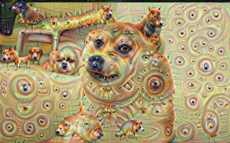 doge_3370416k